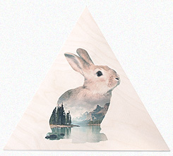 Faunascapes Plywood Print Rabbit
