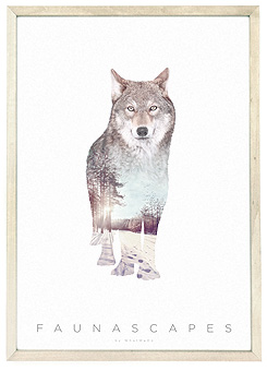 Faunascapes Poster Print Wolf